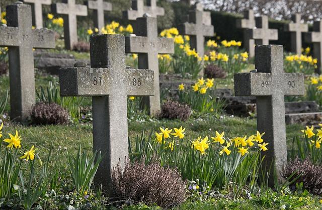 Jak wybrać kwiaty na grób? Na co należy zwrócić uwagę?